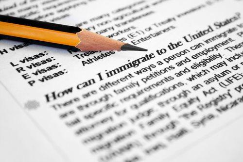 Understanding the Citizenship Application